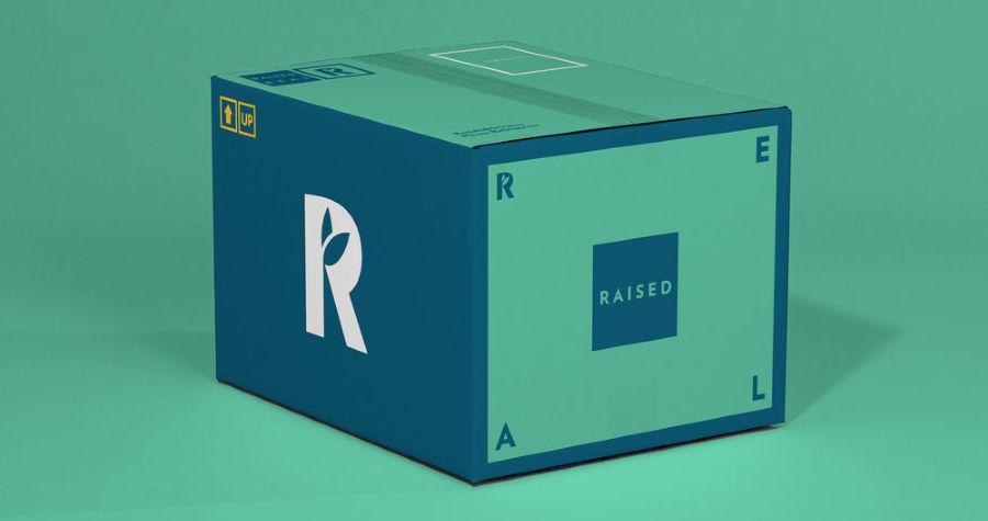 Raised real box