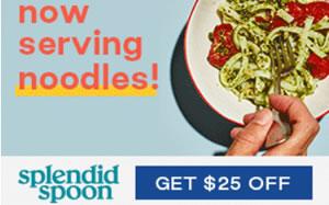 splendid spoon 25 off coupon