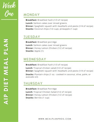 AIP Diet Meal Summary