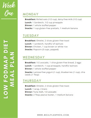 Low Fodmap Meal Summary